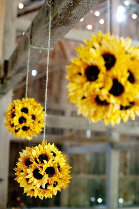 sunflowers-11