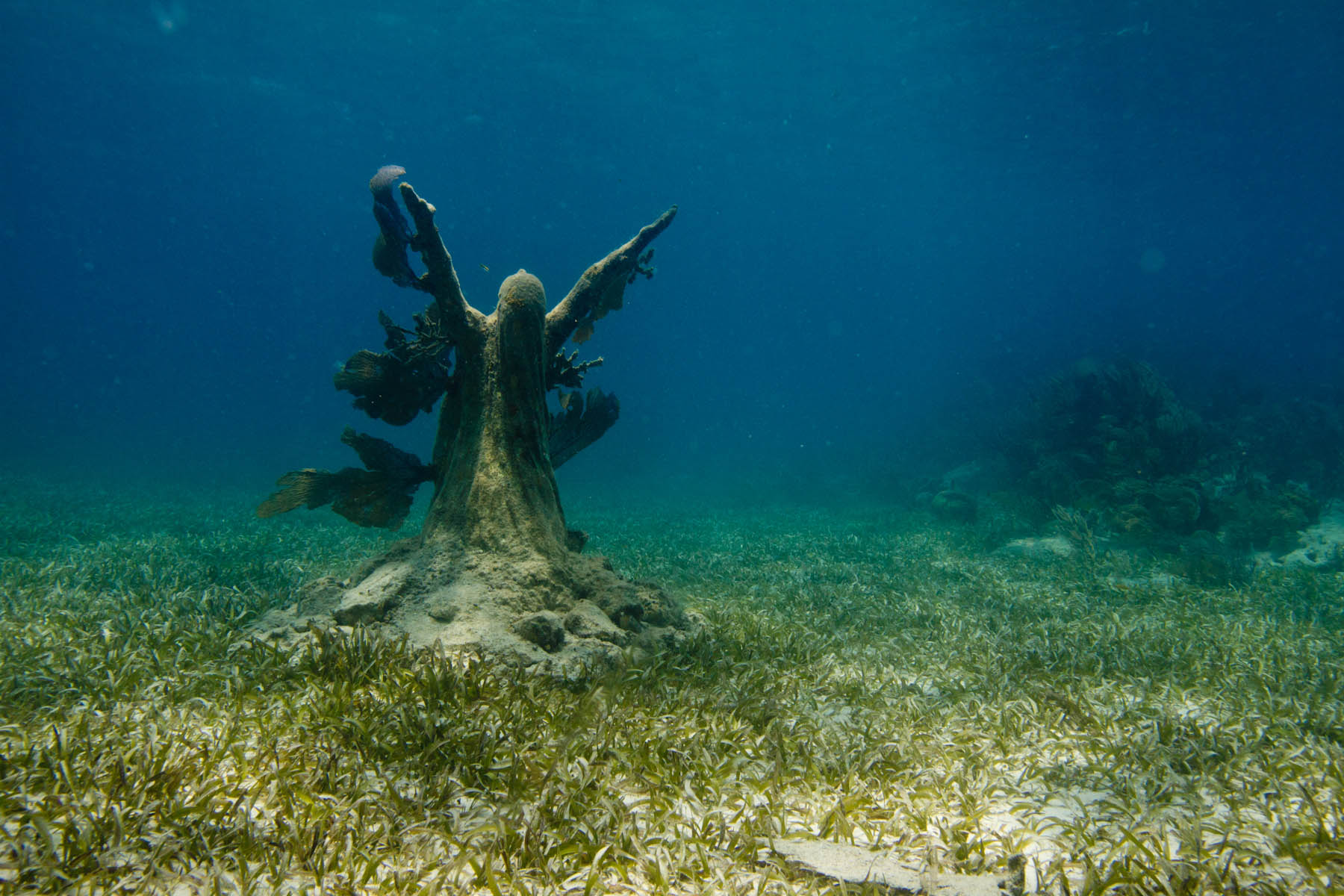 Reclamation-Underwater-Sculpture-Jason-DeCaires-Taylor-Reclamation