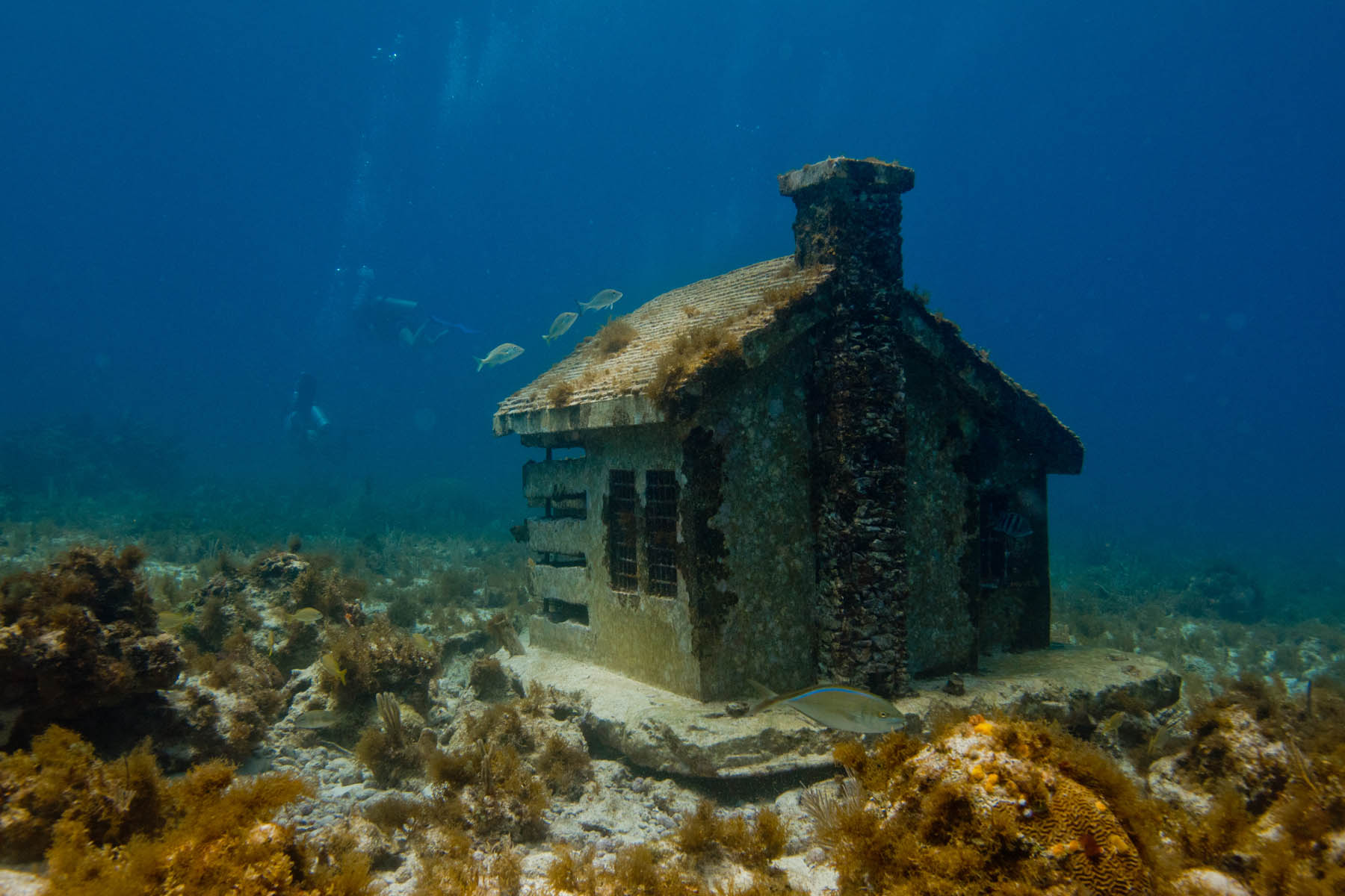 Urban-Reef-House-I-Underwater-sculpture-Jason-deCairesTaylor-